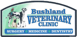 Bushland Small Animal Veterinary Clinic